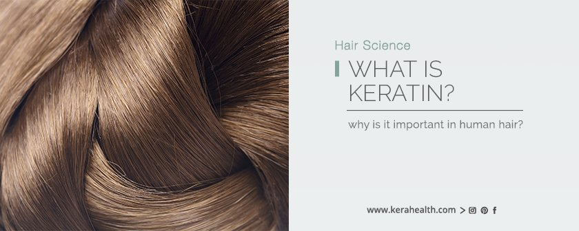 What is Keratin? Why is it Important in Human Hair?