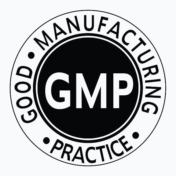 GMP Logo EN