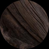 Pine Bark Extract (Oligopin)